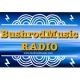 BushrodMusic RADIO-LA
