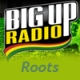 BIGUPRADIO Roots